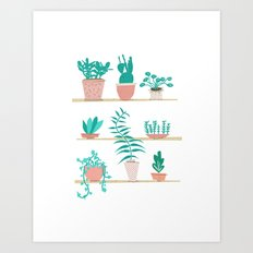 Pot Plants Art Print