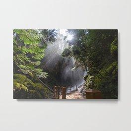 Fletcher Falls Three Metal Print