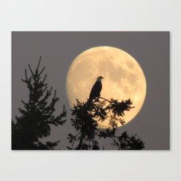Lunar Eagle Canvas Print