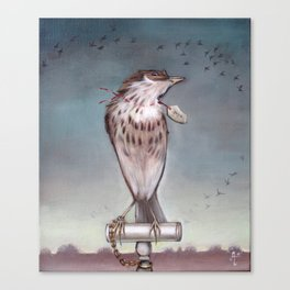 Yearning on a limb. (Bird) Canvas Print