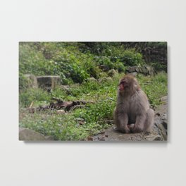 A Forlorn Summer Day Metal Print