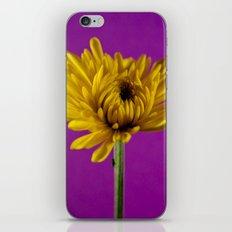 Grape and Lemon iPhone & iPod Skin