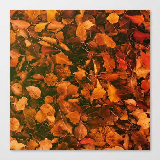 DRY LEAVES Canvas Print