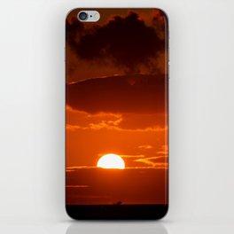 Whale Jump iPhone Skin
