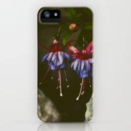 Delicate Dancers iPhone Case