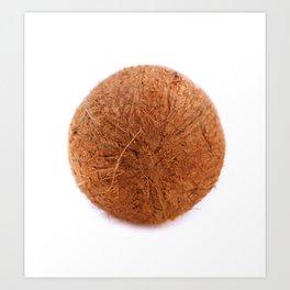 cocos Art Print