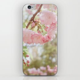 Spring is here iPhone Skin