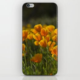 Poppy Fields Forever iPhone Skin