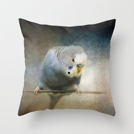 The Budgie Collection - Budgie 3 Throw Pillow