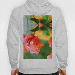 Bougainvillea flower Hoody