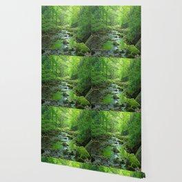 Rocky Forest Creek Wallpaper