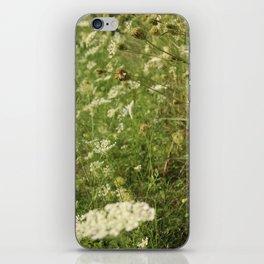 Sunset Weeds iPhone Skin