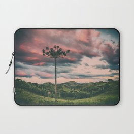 Araucaria in the Sky Laptop Sleeve