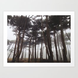 Foggy Presidio Art Print