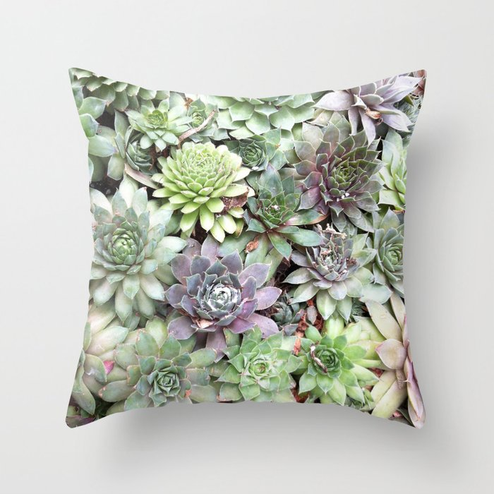 Desert Flower II Throw Pillow