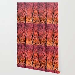 Tree Silhouttes Against The Sunset Sky #decor #society6 #homedecor Wallpaper