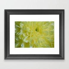 Yellow and Mellow Framed Art Print