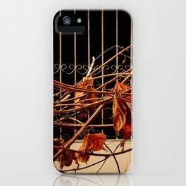 Orange afternoon iPhone Case