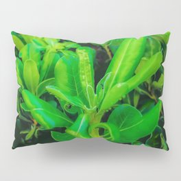 green leaves plant texture background Pillow Sham