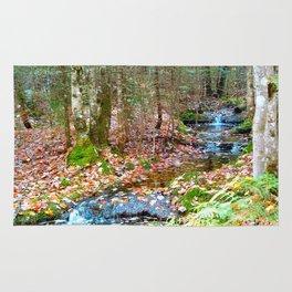 Nature's walk Rug