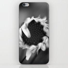 Black Daisy iPhone Skin