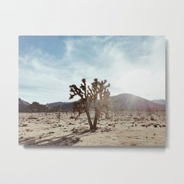 Joshua Tree in Joshua Tree National Park Metal Print
