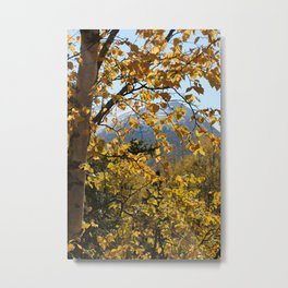 Golden Fall Leaves Metal Print
