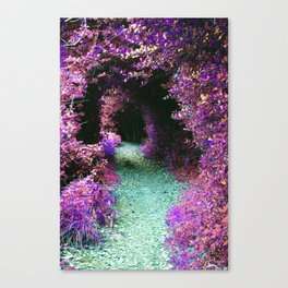 Purple Fantasy Woodland Forest Path Canvas Print