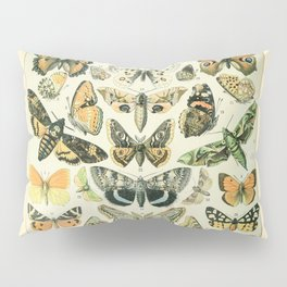 Vintage Butterfly Diagram // Papillions by Adolphe Millot 19th Century Science Textbook Artwork Pillow Sham