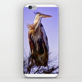 Great Blue Heron iPhone Skin