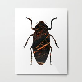 beetles_dream_03 Metal Print
