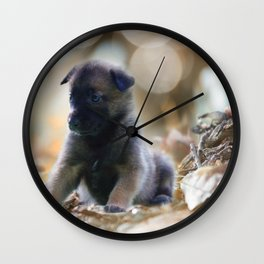 Beautiful puppies in autumn leave Wall Clock