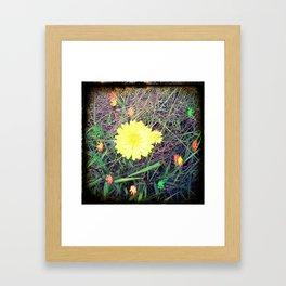 fairy flower lights.... Framed Art Print