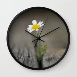 simply daisy Wall Clock