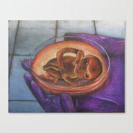 In Vitro Canvas Print
