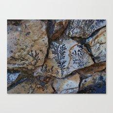 Nature Picks up her Brush 3 Canvas Print