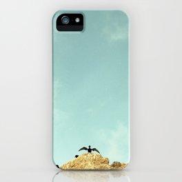 El Matador Beach, California. Stretching Sea Bird. iPhone Case
