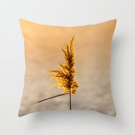 Reed tip in Camargue Throw Pillow