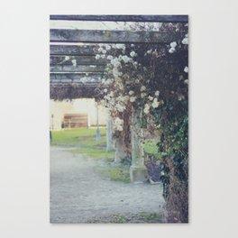 Österreich (8) Canvas Print