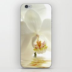 Orchid in a bath iPhone & iPod Skin