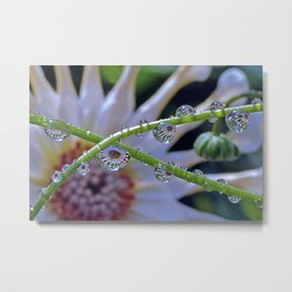 Alien Spores Multiply and Take Over Metal Print
