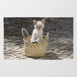 kitten in a rustic basket, Portugal Rug