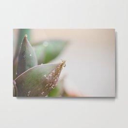 April Showers Metal Print