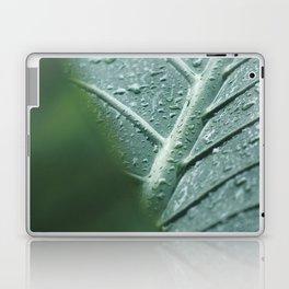 Leaf still life, fine art, high quality, macro photography, nature photo Laptop & iPad Skin