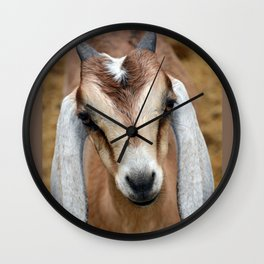 Young Goat Wall Clock