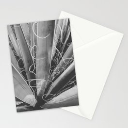 Inside The Spanish Dagger Stationery Cards