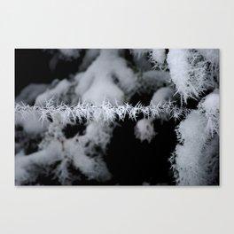 Frozen Fog Canvas Print