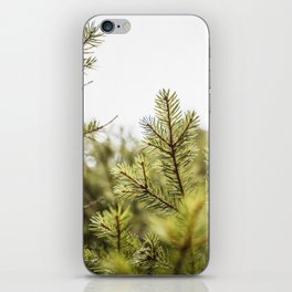 Into the Pines iPhone Skin