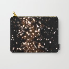 GOLD RAIN or DUST TO DUST Carry-All Pouch