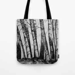 The Row  Tote Bag